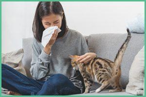 Állatszőr allergia kezelése fényterápiával